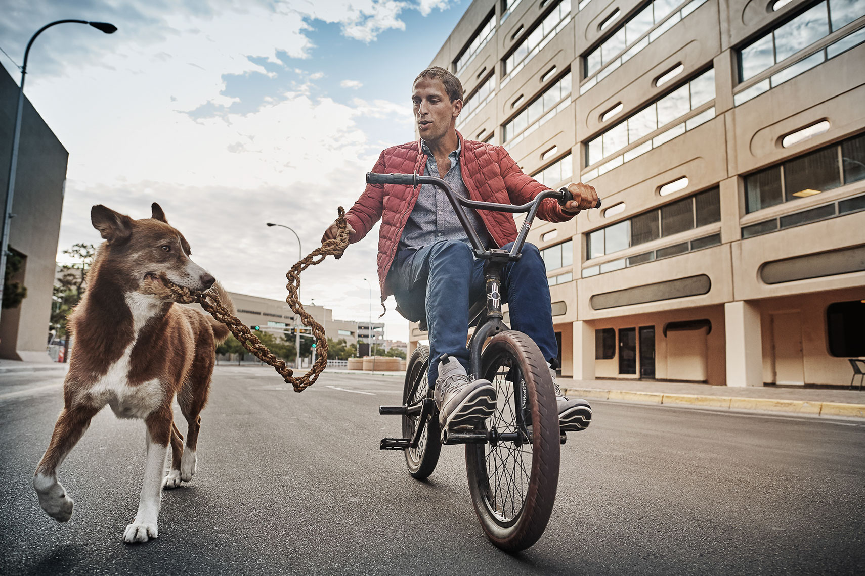aki_on_bike_with_dog_timberland